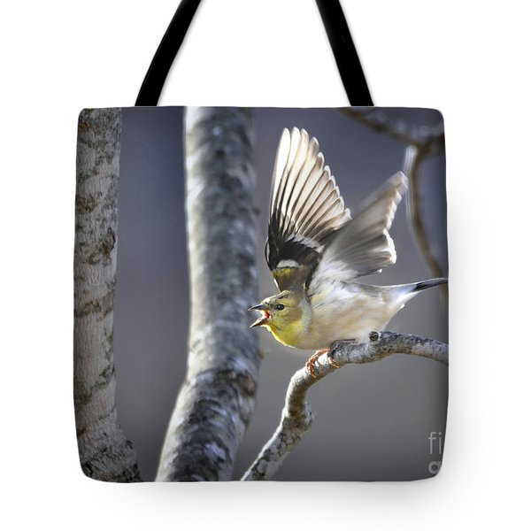 The High Notes Tote Bag