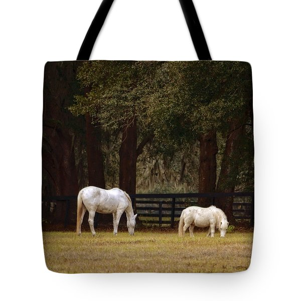 The Horse And The Pony - Standard Size Tote Bag by Mary Machare