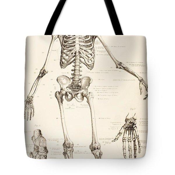 The Human Skeleton Tote Bag by English School