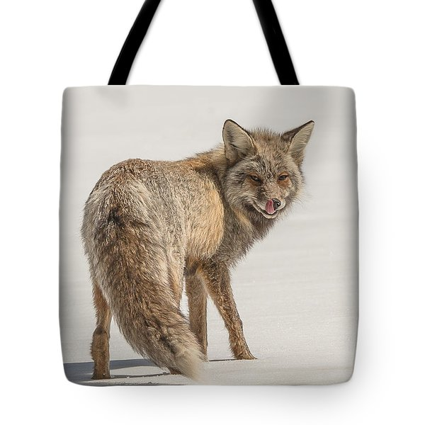 Tote Bag featuring the photograph The Hungry Fox by Yeates Photography