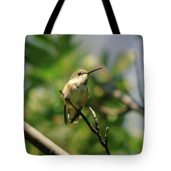 The Intimidating Watchman Tote Bag by Jeff Swan
