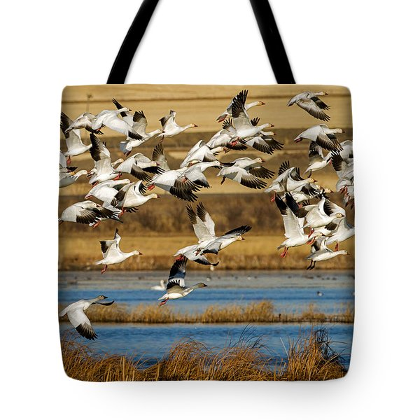 Tote Bag featuring the photograph The Journey by Jack Bell