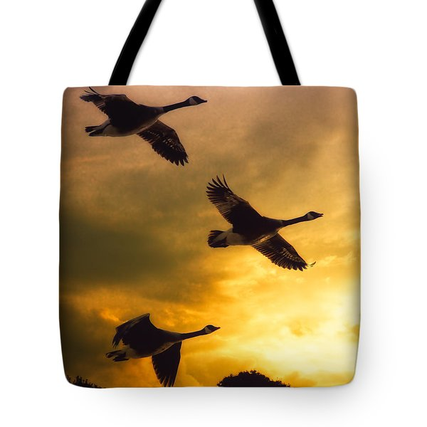 The Journey South Tote Bag