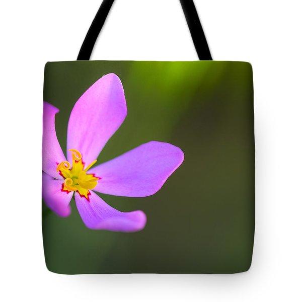 The Joy Of Sunrise Tote Bag by Melanie Moraga