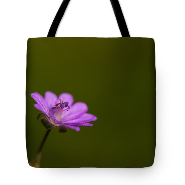 The Junior Is On The Way  Tote Bag by Andreas Levi