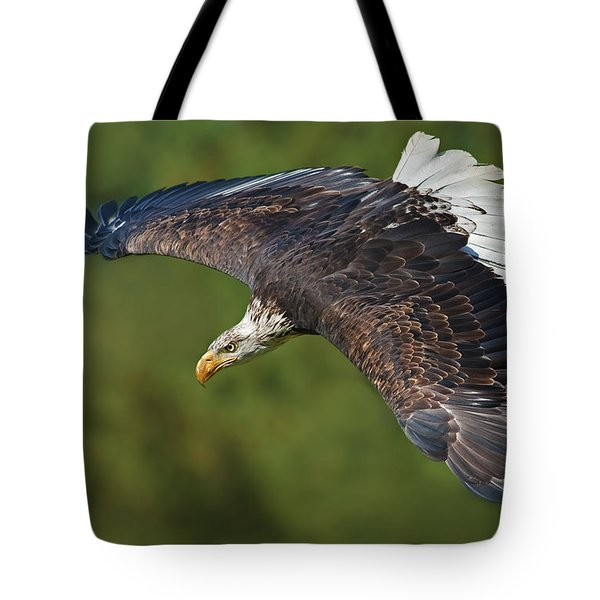 The King Of The Skies... Tote Bag by Nina Stavlund