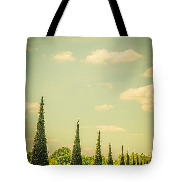 The Knot Garden's Triangular Landscaping Tote Bag