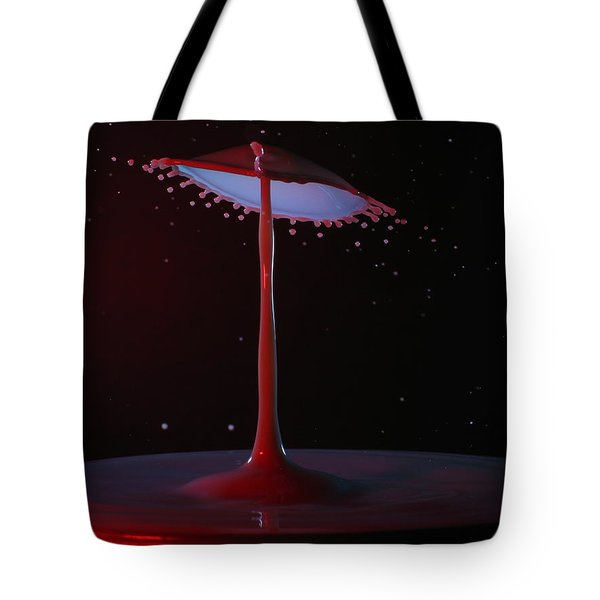 Tote Bag featuring the photograph The Lamp by Kevin Desrosiers