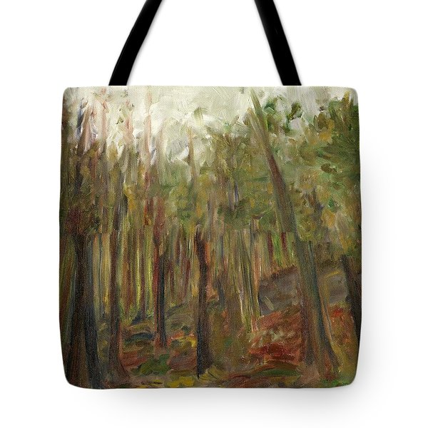The Land Between II Tote Bag