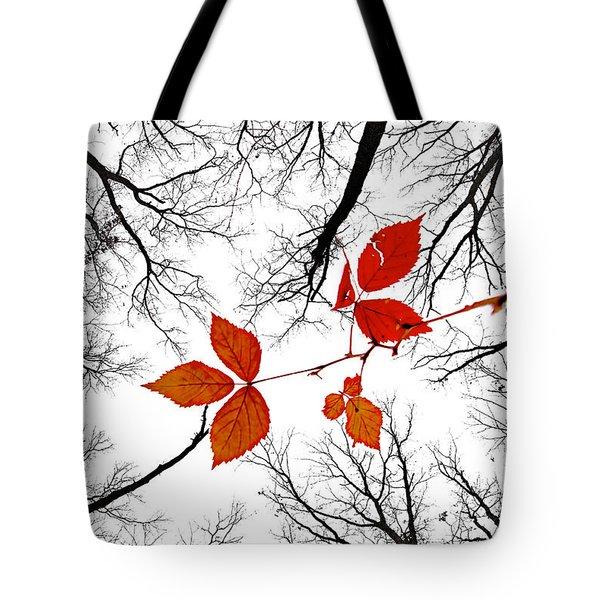 The Last Leaves Of November Tote Bag