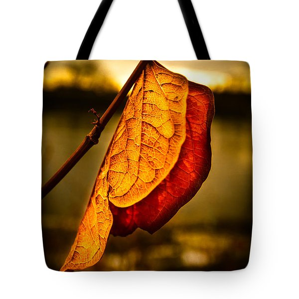 The Leaf Across The River Tote Bag by Bob Orsillo