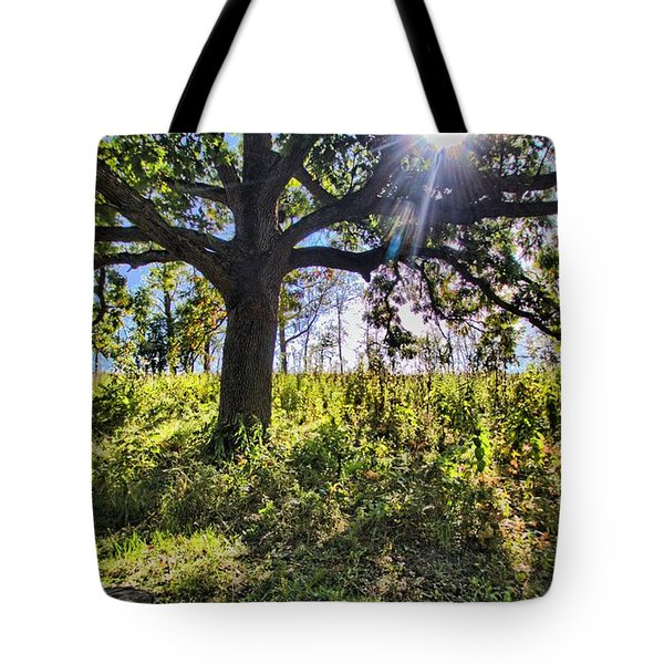 The Learning Tree Tote Bag by Daniel Sheldon