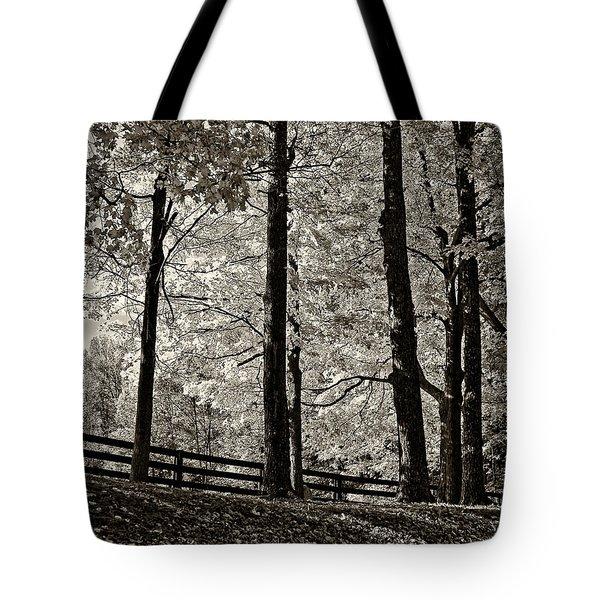 The Less Traveled Sepia Tote Bag by Steve Harrington