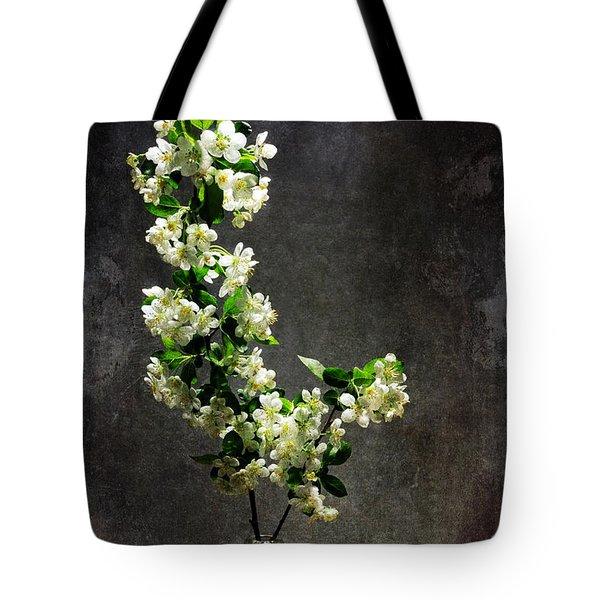The Light Season Tote Bag