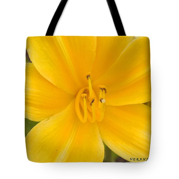 Tote Bag featuring the photograph The Lily From Kentucky by Verana Stark