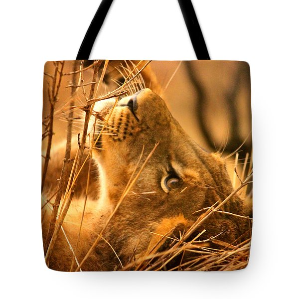 The Lion Muse Tote Bag