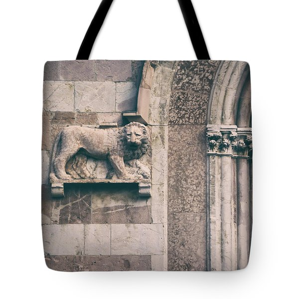The Lion's Den.. Tote Bag by A Rey