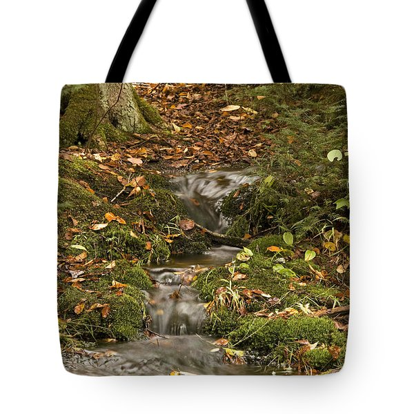The Little Brook That Could Tote Bag
