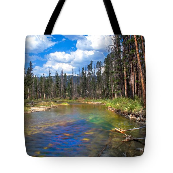 The Little Redfish Creek Tote Bag by Robert Bales