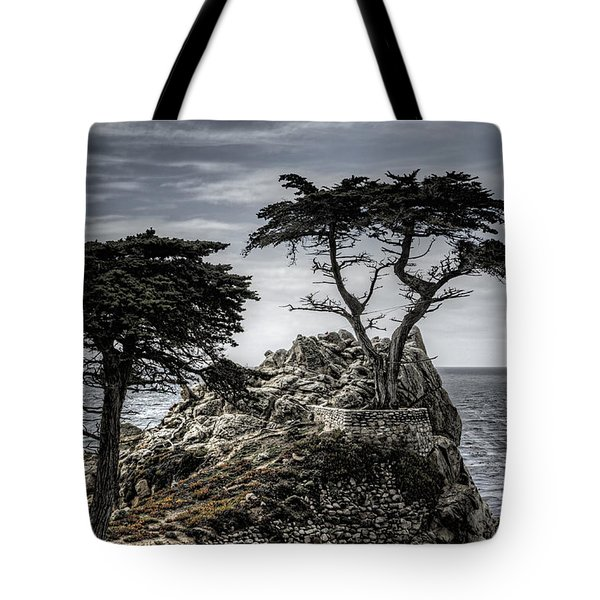 The Lone Cypress Tote Bag by Eduard Moldoveanu