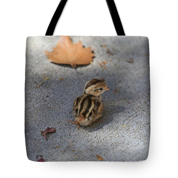 The Lone Survivor Tote Bag
