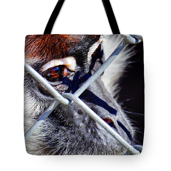 The Look Of Despair Tote Bag by Jason Politte