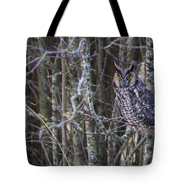 Tote Bag featuring the photograph The Look Of Surprise by Windy Corduroy