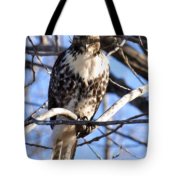 The Look Says It All Tote Bag