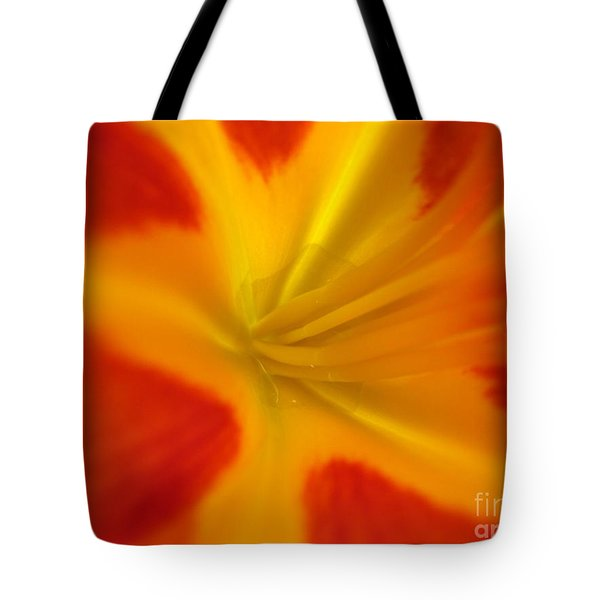 The Lords Canvas Tote Bag by Jennifer E Doll