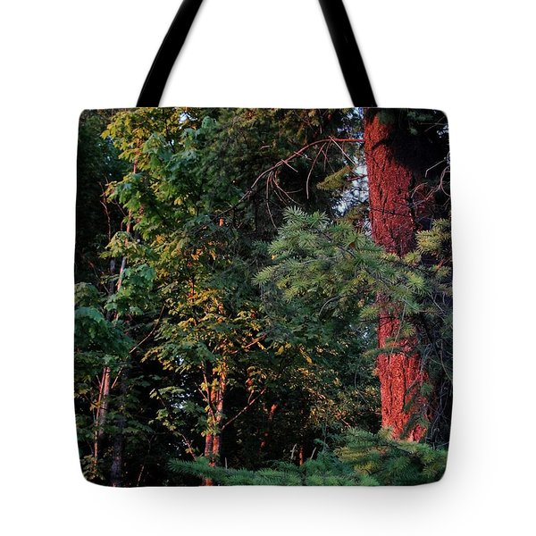 Tote Bag featuring the photograph The Magic Hour by Natalie Ortiz
