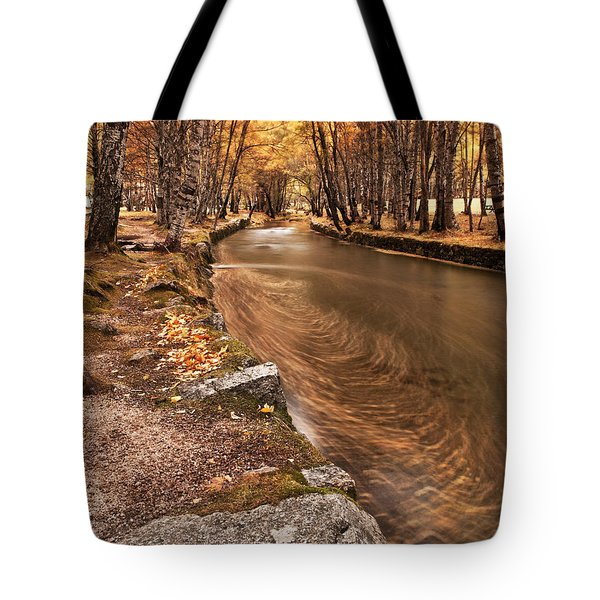The Magic Of Fall Tote Bag