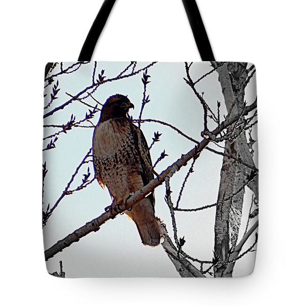 The Majestic Hawk Tote Bag