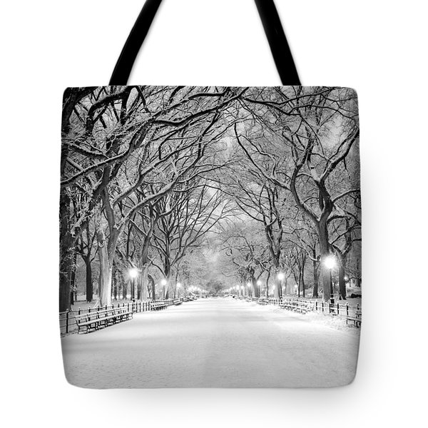 Tote Bag featuring the photograph The Mall by Mihai Andritoiu