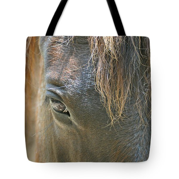 The Mane Eye Tote Bag by Bruce Gourley