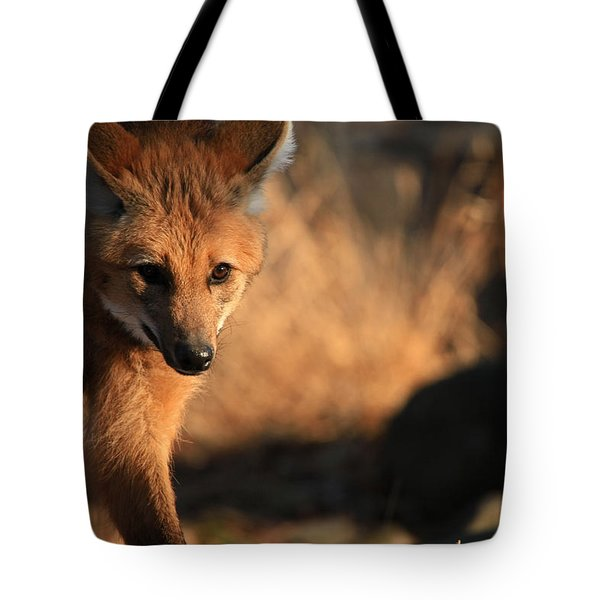 The Maned Wolf Tote Bag by Karol Livote