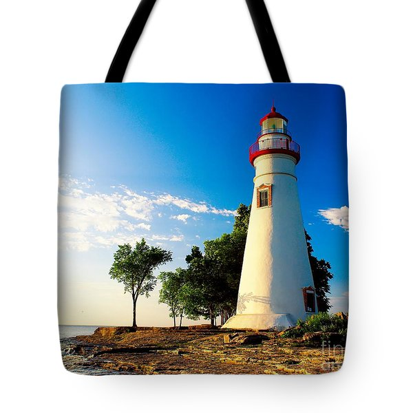 The Marblehead Light Tote Bag by Nick Zelinsky