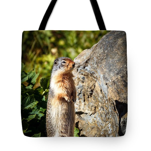 The Marmot Tote Bag by Robert Bales