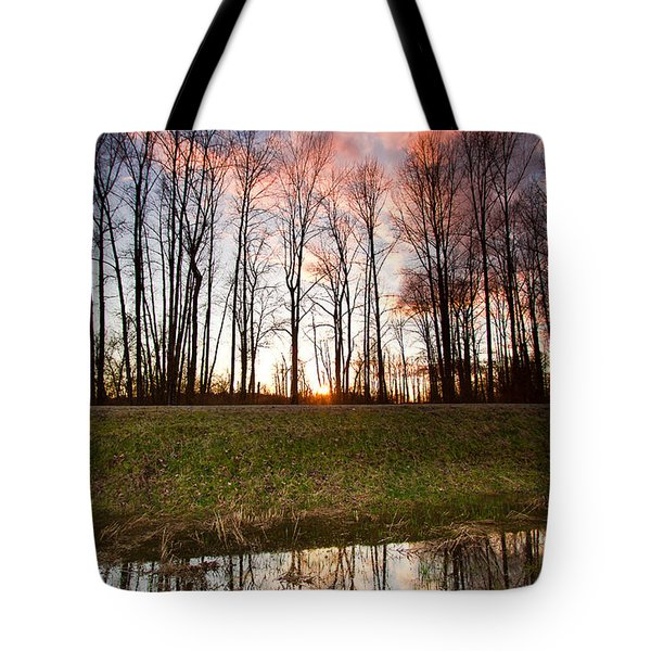 The Marsh Tote Bag by Eti Reid