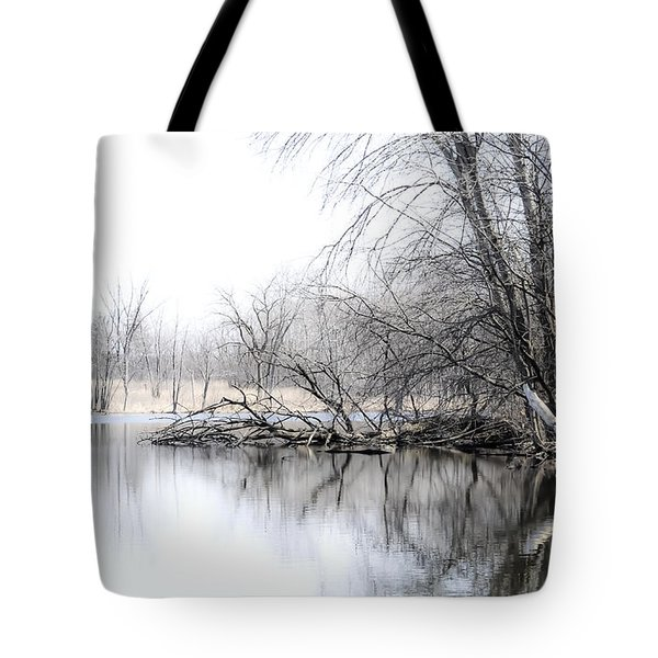 The Marsh Tote Bag by Julie Palencia