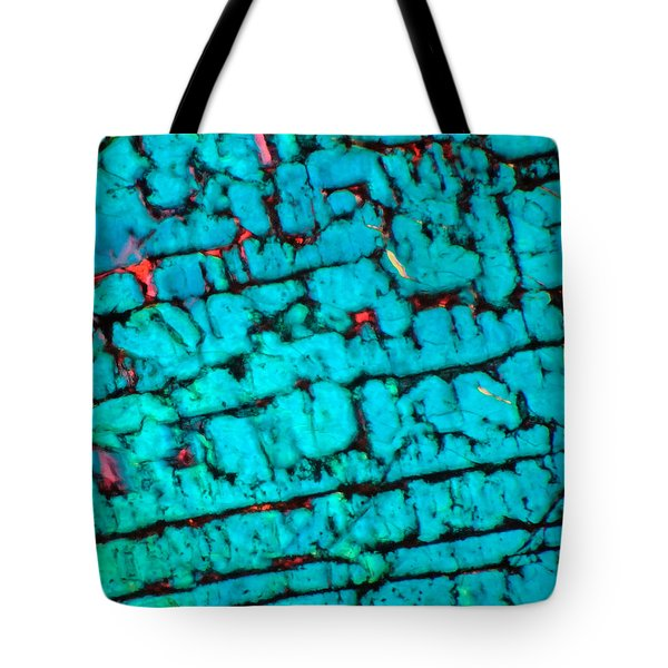 The Maze Tote Bag by Tom Phillips