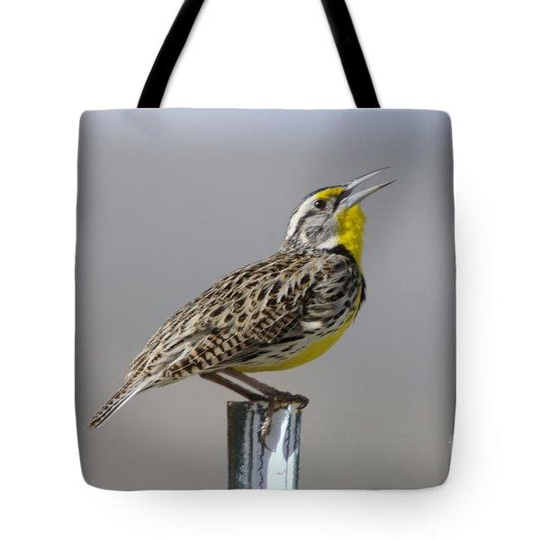 The Meadowlark Sings  Tote Bag