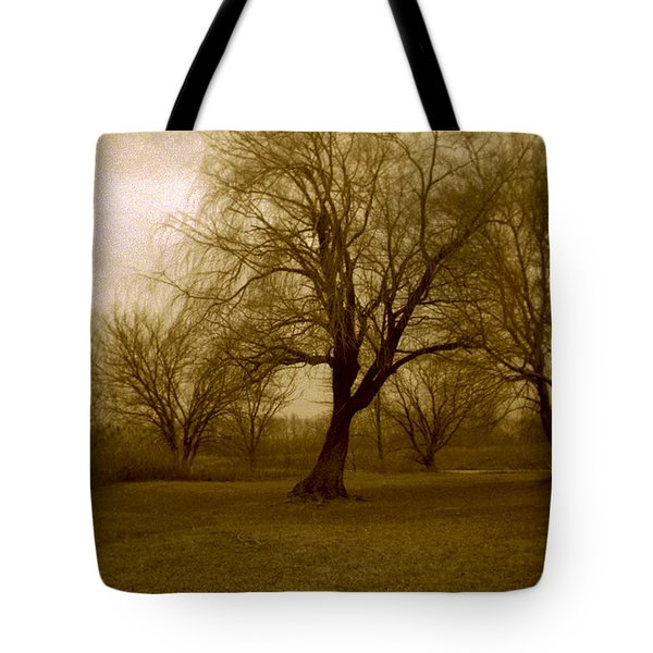 The Midnight Sky Tote Bag