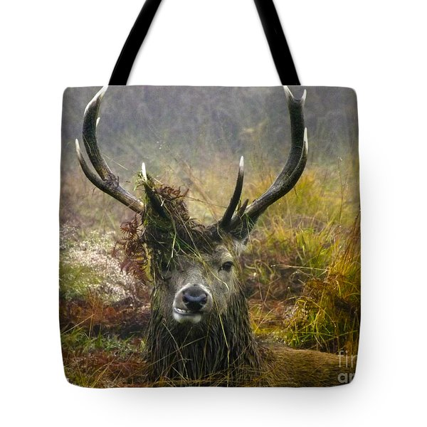 Stag Party The Series The Morning After Tote Bag