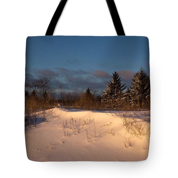 The Morning After The Snowstorm Tote Bag by Georgia Mizuleva