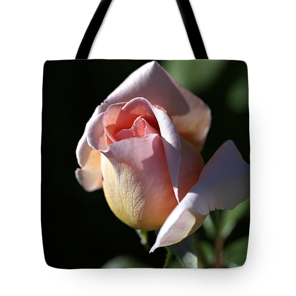 The Morning Pink Rose Tote Bag