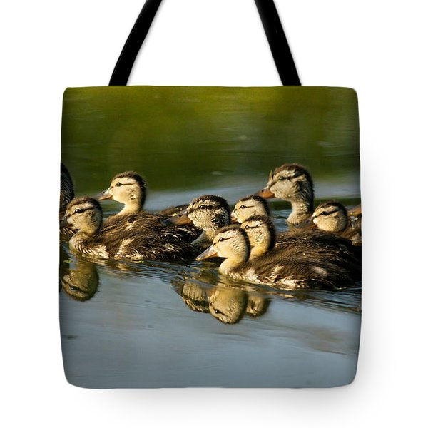 The Morning Rush Tote Bag by Robert Frederick