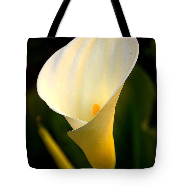 Tote Bag featuring the photograph The Morning Trumpets by Clayton Bruster