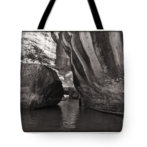 Tote Bag featuring the photograph The Narrows II by Angelique Olin