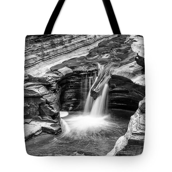 The Narrows Watkins Glen Tote Bag