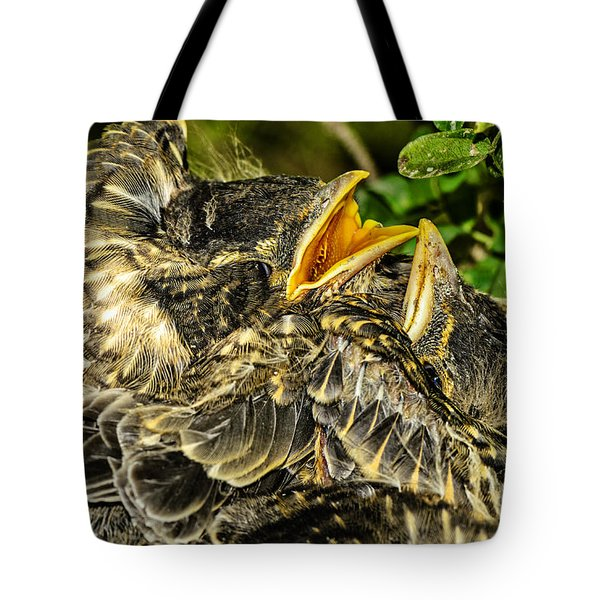 The Nestlings In Anticipation Of Food Tote Bag